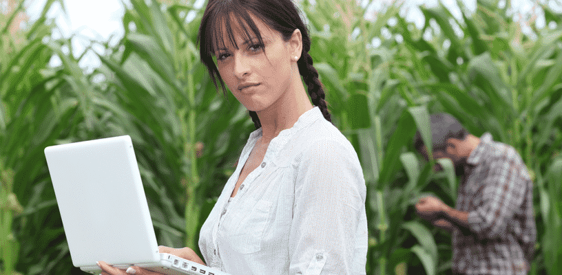 Lady in Cornfield with Laptop doing SEO